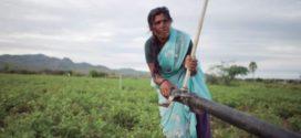 Exposició: Salvar la terra per erradicar la pobresa